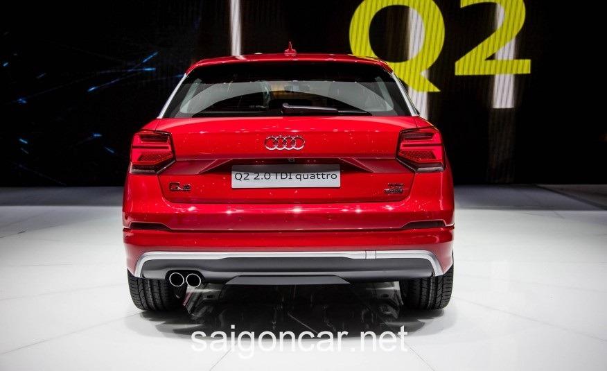 Audi Q2 Ong Xa