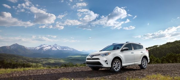 Toyota Rav4 dau xe