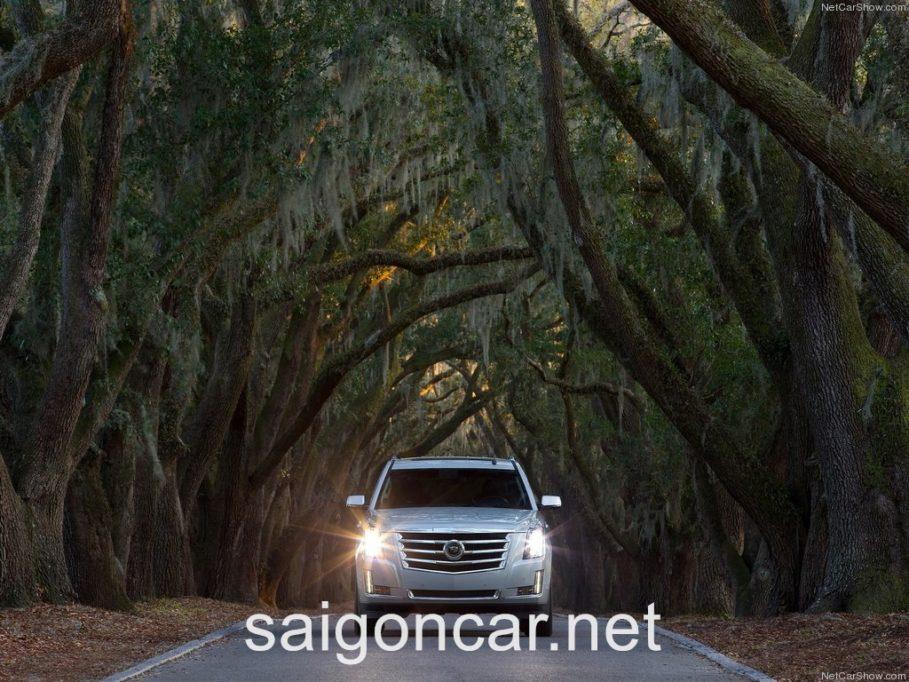 Cadillac Escalade Dau Trang