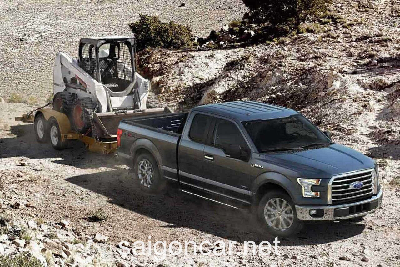 Ford F-150 Dong Co 3