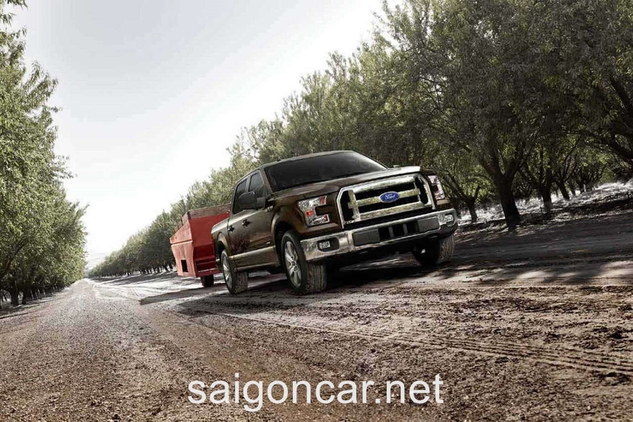 Ford F-150 Hong Xe