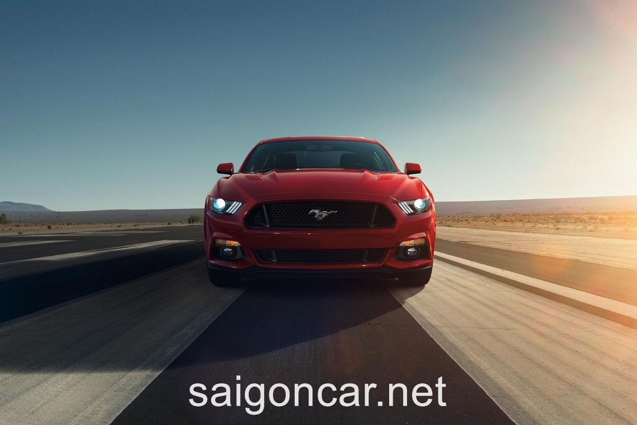 Ford Mustang Dau Do