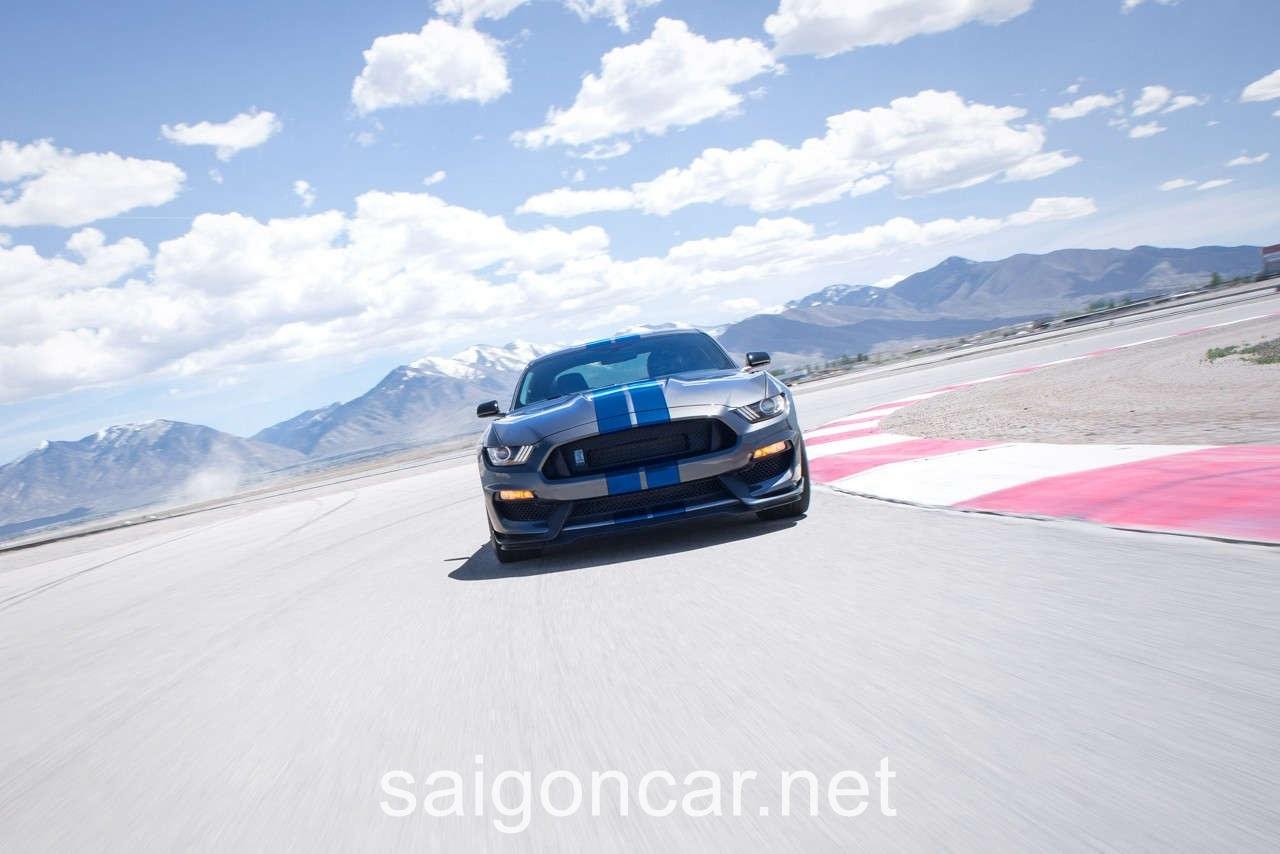 Ford Mustang Dau Xam