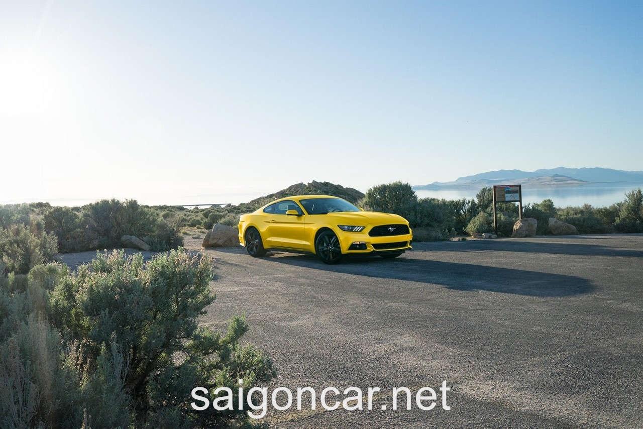 Ford Mustang Hong Vang