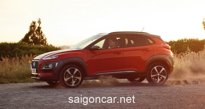 Hyundai Kona Dong Co