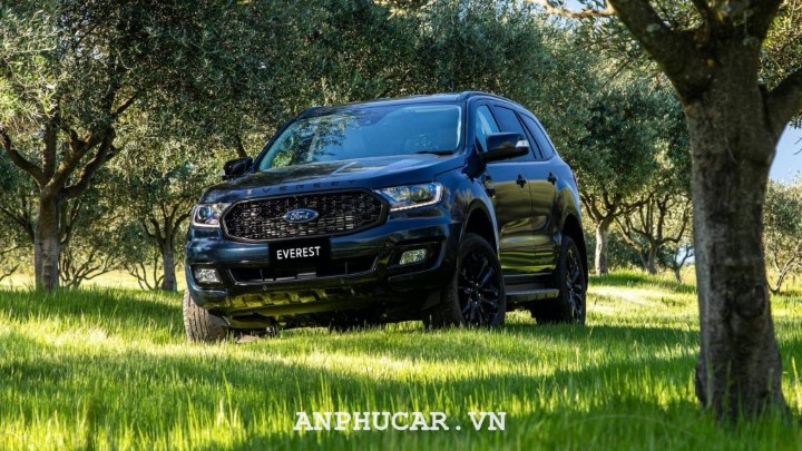 Ford Everest Sport 2020 mua xe